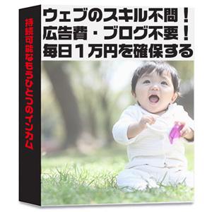 【20部限定配本】ウェブのスキル不問・固…